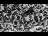 ОХОТНИКИ ЗА НАЦИСТАМИ.КТО УБИЛ ГЕНРИХА ГИММЛЕРА.2009.АНГЛИЯ.КАНАДА.ТРЕТИЙ РЕЙХ.ИСТОРИЯ.ДОКУМЕНТАЛЬНЫЙ.